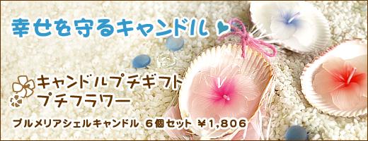 welcome_shell.jpg